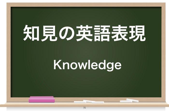 知見の英語表現