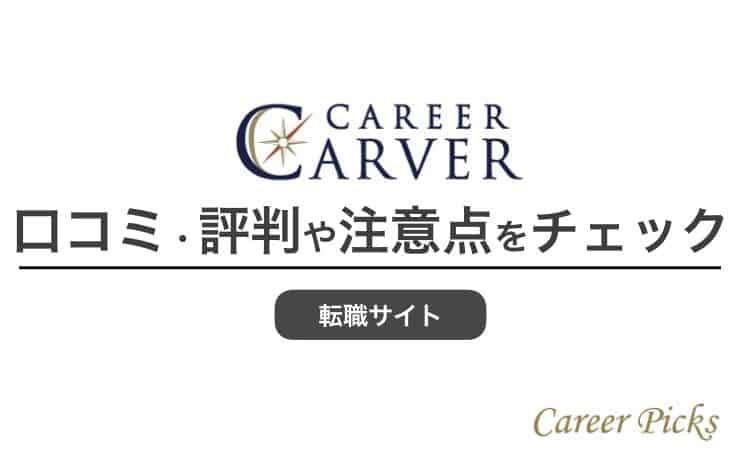キャリアカーバー