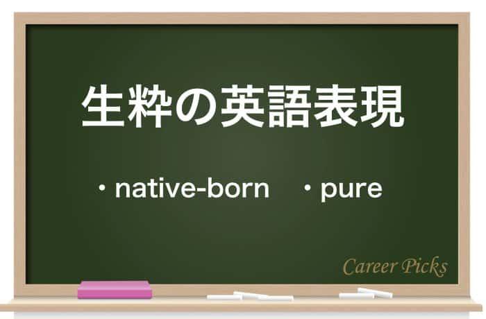 生粋の英語表現