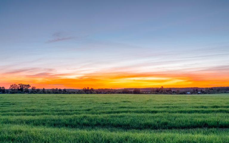 田舎で仕事は夢じゃない!おすすめの仕事やメリットとデメリット大公開